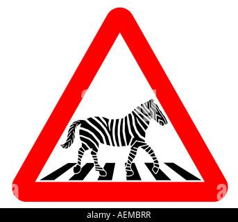 conceptual illustration of zebra on zebra crossing - Stock Photo