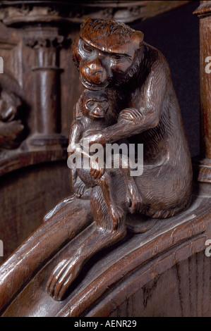 Köln, Dom, Detail des Chorgestühls, Affenmutter und Affenkind - Stock Photo