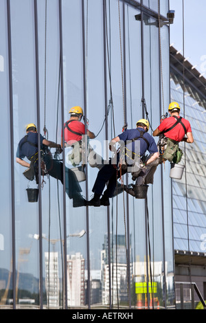 Window cleaners abseiling down a modern office block, Glasgow, Scotland. - Stock Photo