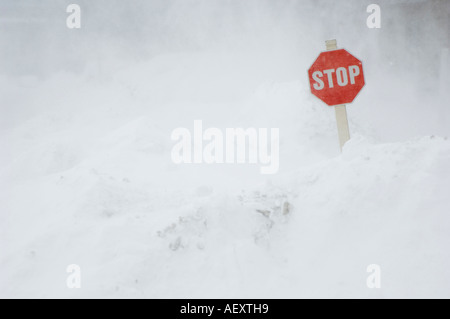 Stop sign in snow bank - Stock Photo