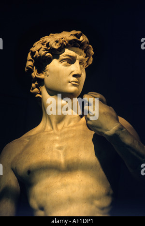 Statue of David by Michelangelo in Galleria dell Accademia, Florence, Italy - Stock Photo