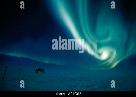 Bright green Southern Lights, Aurora Australis, over Halley Bay research station, Antarctica - Stock Photo