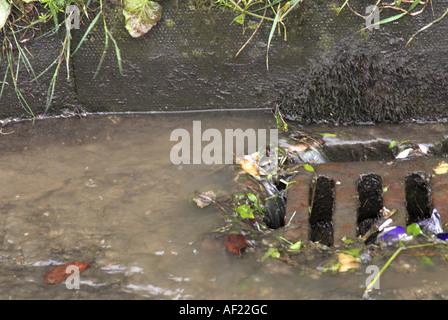 Rainwater running off road into drain during heavy rain Norfolk UK May - Stock Photo
