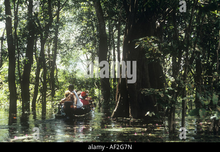 A canoe navigates through flooded part of the Amazon rainforest in Brazil. - Stock Photo