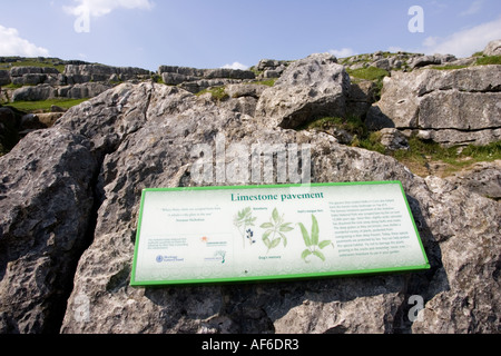Information board on limestone pavement above Malham Cove worn and deeply eroded by acid rain Yorkshire Dales UK - Stock Photo