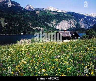 geography / travel, Austria, Styria, landscape / landscapes, Totes Gebirge, landscape at Grundlsee, Salzkammergut, - Stock Photo