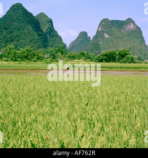Landscapes World Travel. A landscape showing the mountains in Guilin in Guangxi in China in East Asia. Adventure - Stock Photo