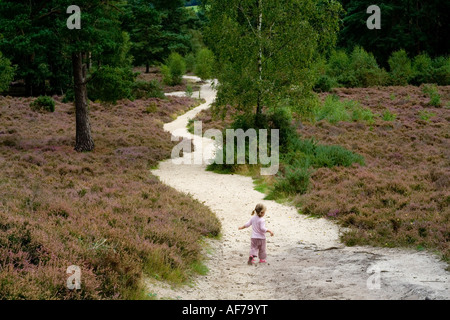 A young girl runs down a sandy path in heathland near Guildford in the Surrey countryside UK - Stock Photo