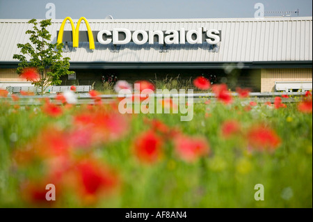poppy flowers and McDonalds store in Clitheroe, Lancashire, UK - Stock Photo