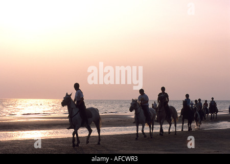 Horse Riding along the beach at sunset, Rindby Beach, Rindby, Fano, Denmark - Stock Photo