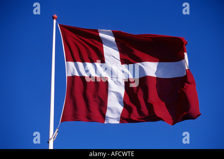 Dannebrog Danish Flag, Near Ribe, Southern Jutland, Denmark - Stock Photo