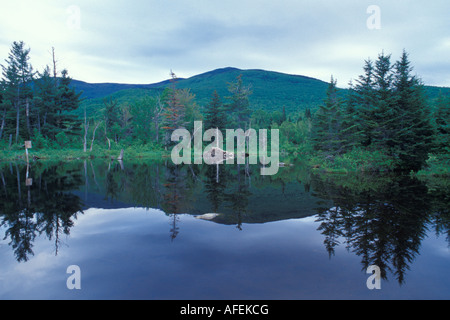 Beaver pond in New Hampshire's White Mountain National Forest - Stock Photo