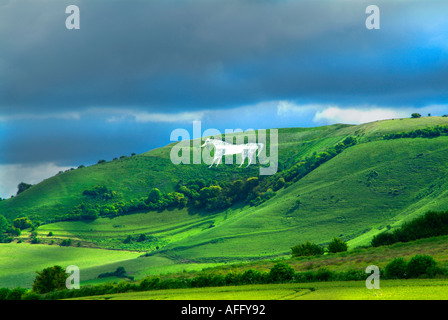 White horse Bratton camp Westbury Wiltshire England UK United Kingdom GB Great Britain EU European Union Europe - Stock Photo