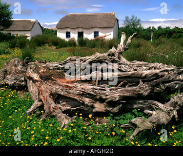 IE - CO. KERRY: Cottage at Bog Village Open Air Museum - Stock Photo
