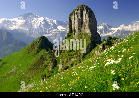 Mt Daubenhorn in front of Mt Jungfrau Schynige Platte Bernese Oberland Switzerland - Stock Photo