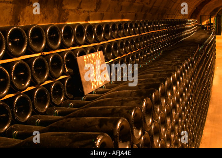 Rows of bottles of champagne ageing in the cellars of Moet & Chandon in Epernay Marne France - Stock Photo