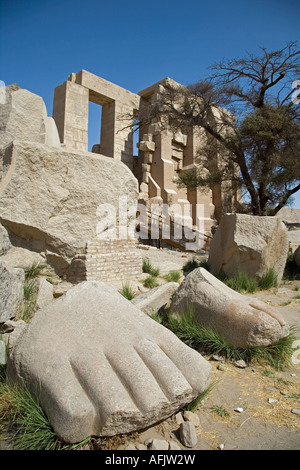 A giant foot is one of the few remains of the colossal 17m statue of Ramses II at the Ramesseum, Luxor.B347 - Stock Photo
