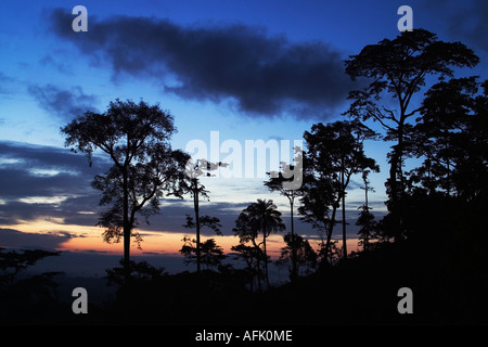 Dawn over African Tropical Rainforest with mist clearing, Ghana, West Africa - Stock Photo