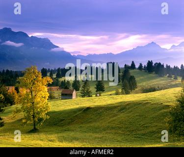 DE - BAVARIA:  Landscape near Trauchgau in the Allgäu - Stock Photo