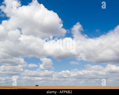 BLUE SKY and CUMULUS CLOUDS England UK - Stock Photo