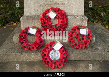 poppy rememberance sunday war world one 1 two 2 army navy airforce dead soldier airman sailor death die - Stock Photo