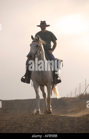An Israeli cattle herder mounted on a horse in the Golan heights northern Israel - Stock Photo
