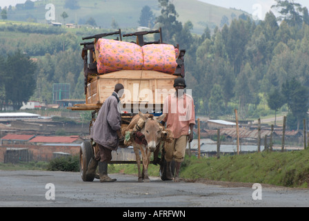 Two Kikuyu men with a donkey cart The cart is heavily loaded with furniture pile high Kenya East Africa - Stock Photo