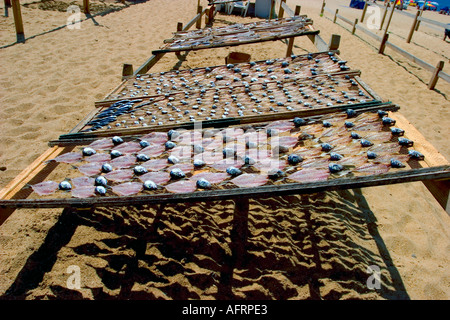 Fish drying  at Nazare beach Portugal - Stock Photo