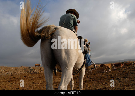 An Israeli cattle herder wearing a pistol mounted on a horse in the Golan heights northern Israel - Stock Photo