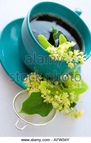 Lipovy caj - linden healing tea - Stock Photo