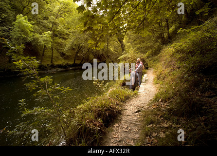 three people walking on the woodland path by the River Teify Tivy Cenarth Ceredigion Wales summer 2007 UK - Stock Photo