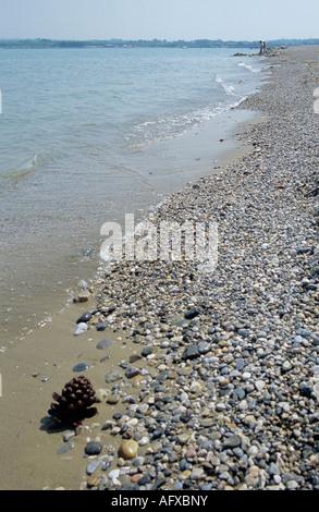 Beach Strand - Stock Photo