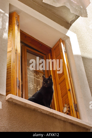 Black Cat sat on windowsill of house with wooden shutters at the window in the South of France - Stock Photo