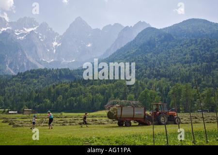 Family hay making in Alpine valley meadow with mountain range in Triglav National Park summer. Gozd Martuljek Slovenia - Stock Photo