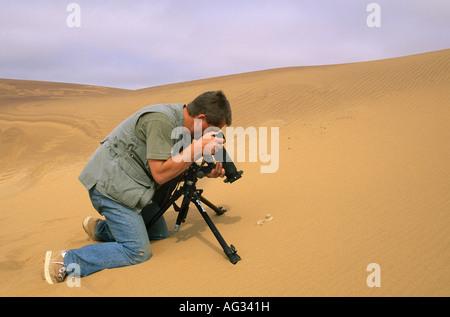 Algeria Djanet Man photographing a Peringuey adder or sidewinder bitis peringueyi. Photographer Frans Lemmens. - Stock Photo