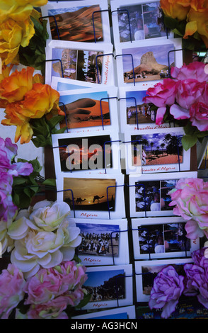 Algeria Tamanrasset Postcards arranged in rack - Stock Photo