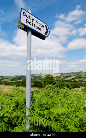 Lesser Spotted Britain - Bully Hole Bottom - Road Sign