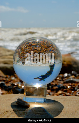 Jumping dog reflected in glass ball crystal ball on seashore beach waves rock pebbles sea sky - Stock Photo