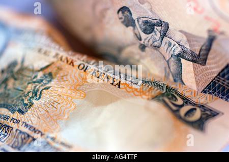 Kenyan money - Stock Photo
