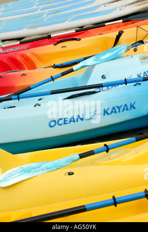 row of canoes kayaks lined up on the beach at sandown shanklin isle of wight ready for hire - Stock Photo