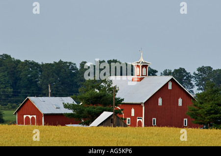Red Midwestern Barns Ohio - Stock Photo