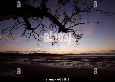 BEAUTY POINT TASMANIA AUSTRALIA HORIZONTAL BAPDB8552 - Stock Photo