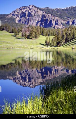 Trout Lake Yellowstone National Park Wyoming - Stock Photo
