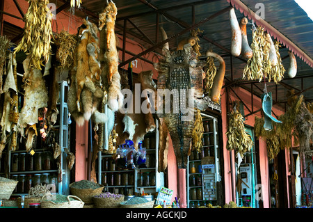 Animal Skins hanging in a market in Marrakech - Stock Photo