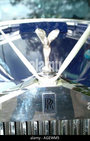 Radiator Grille Rolls Royce In Front Of Qasr Al Sarab Hotel Liwa