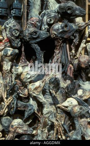Bolivia, La Paz, Selling Llama embryos in witchcraft market - Stock Photo