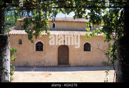 Grapes on vine Panagia Anafonitria 15th C monastery St Dionysios took monastic vows here Zakynthos Ionian Islands - Stock Photo