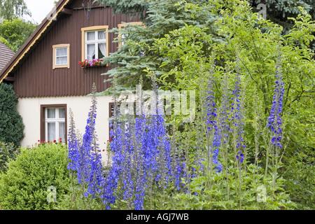 germany brandenburg spreeforest houses in the open air museum village luebbenau lehde - Stock Photo