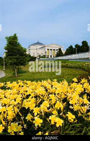 Yellow day lillies at the Shedd Aquarium in downtown Chicago Illinois - Stock Photo