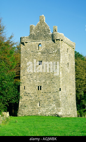 15th C Feartagar Castle, known locally as Jennings Castle, near Tuam, County Galway, Ireland. Once a Burke stronghold, - Stock Photo